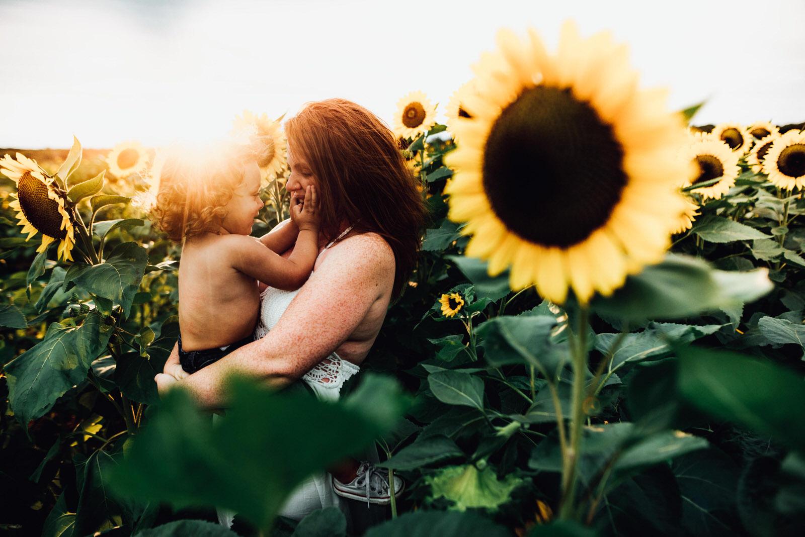 Sunflower field family photos